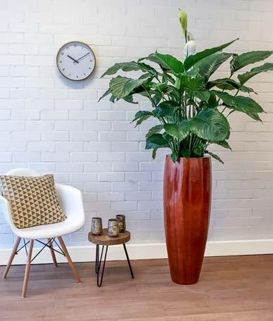 houten plantenpot materiaalkeuze