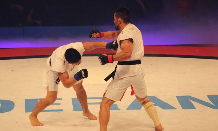 Waarom een vechtsport beoefenen?